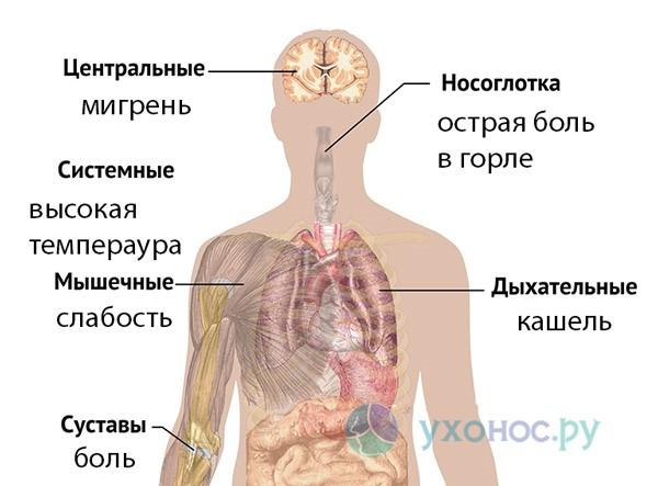 Сильная волна эпидемии гриппа в России на 2019 год: что делать, как вылечить грипп, симптомы у детей и взрослых